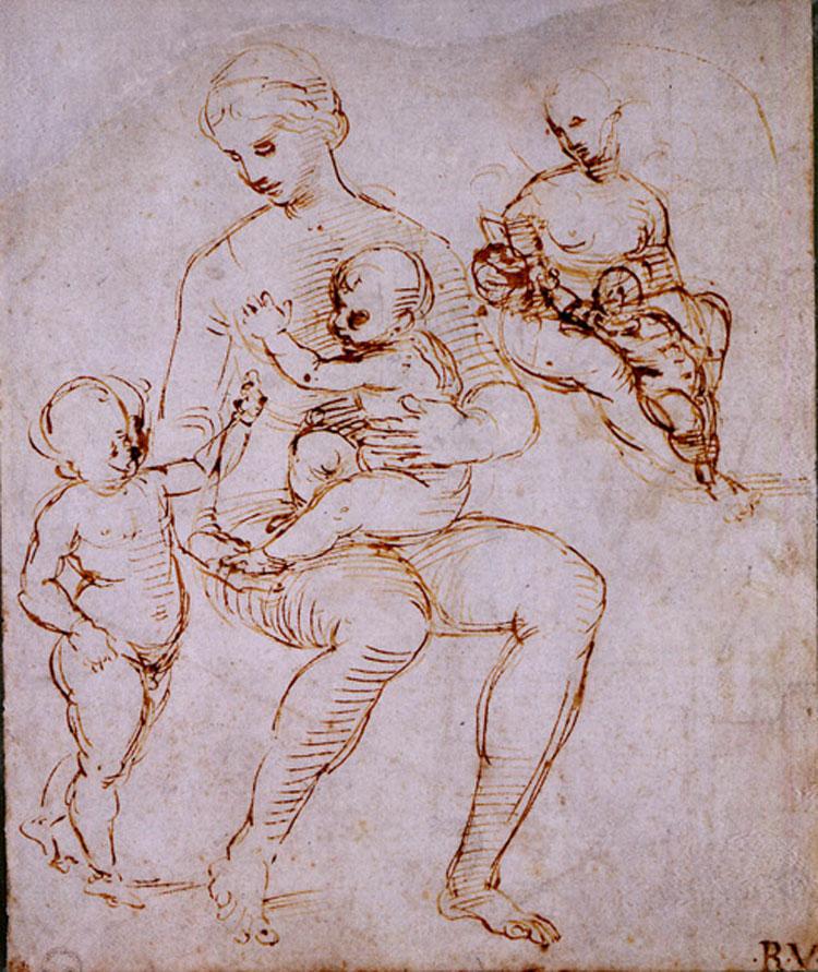 Raffaello, due studi per la Madonna del Cardellino