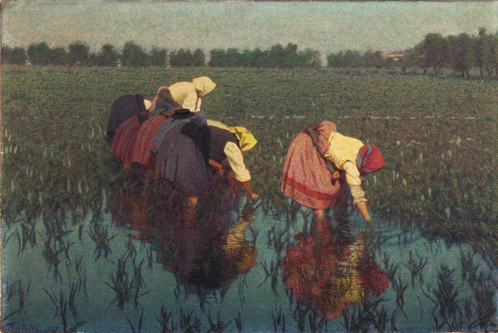 Vita in risaia, il lavoro femminile secondo Angelo Morbelli