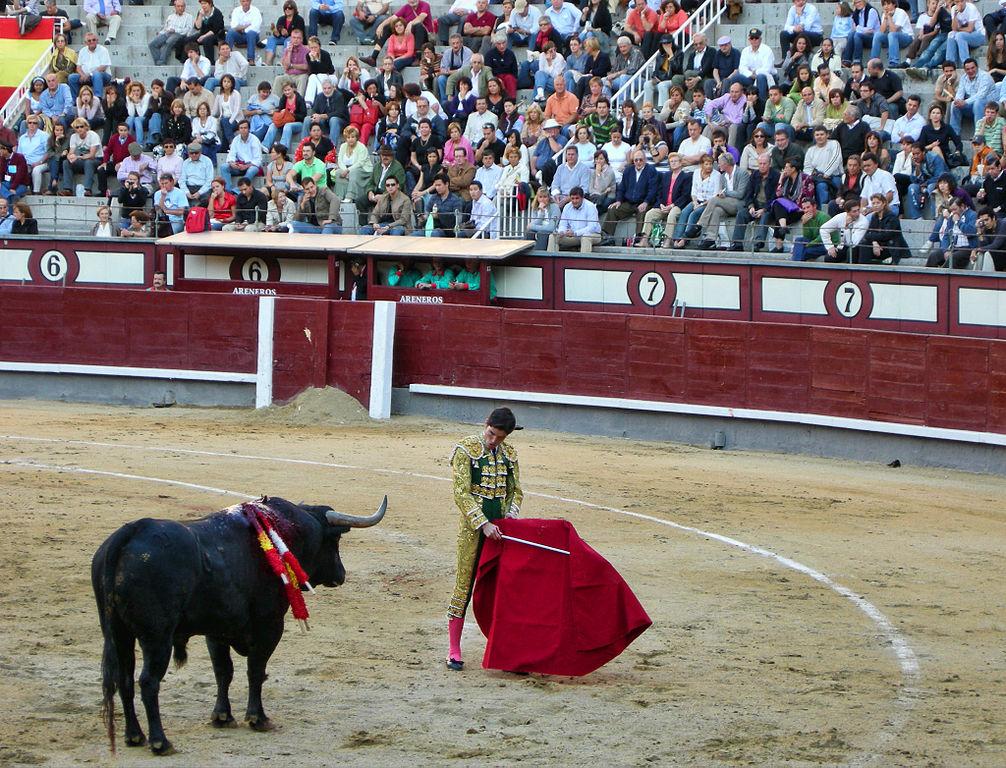 """Spagna, il ministro della Cultura: """"la corrida è una tradizione. Non la aboliremo"""""""