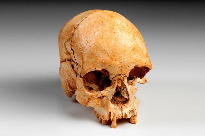 Museo Nazionale di Rio, recuperati frammenti di uno dei più preziosi reperti, lo scheletro di Luzia