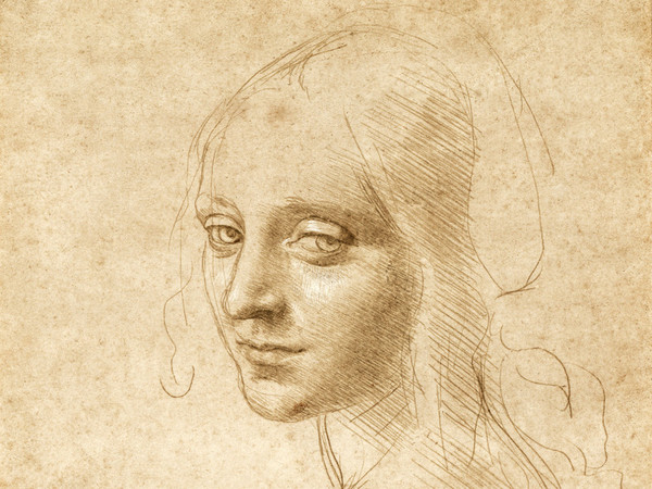Ad Haarlem la più importante mostra di disegni di Leonardo da Vinci mai tenutasi in Olanda
