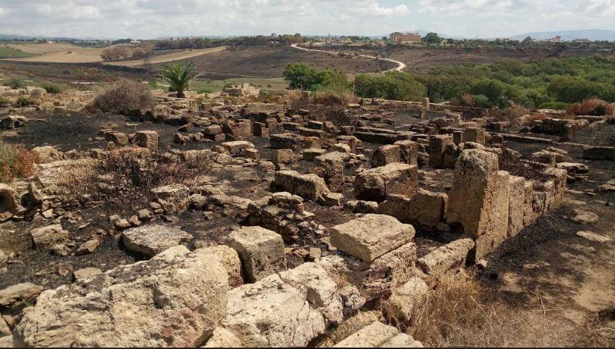 Selinunte, incendio al parco archeologico, secondo quotidiano locale interessate anche le rovine