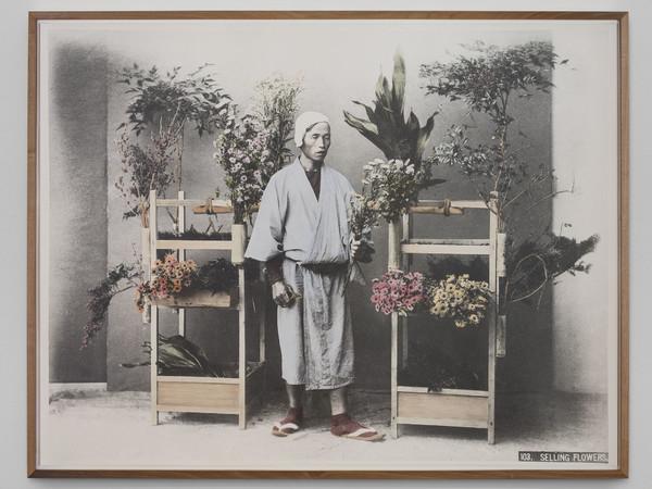 """A Milano il Giappone è in mostra con """"Hana to Yama"""", personale di Linda Fregni Nagler"""