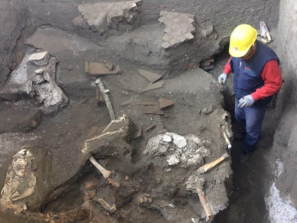 Ancora scoperte importanti a Pompei, rinvenuto un cavallo con rara bardatura militare