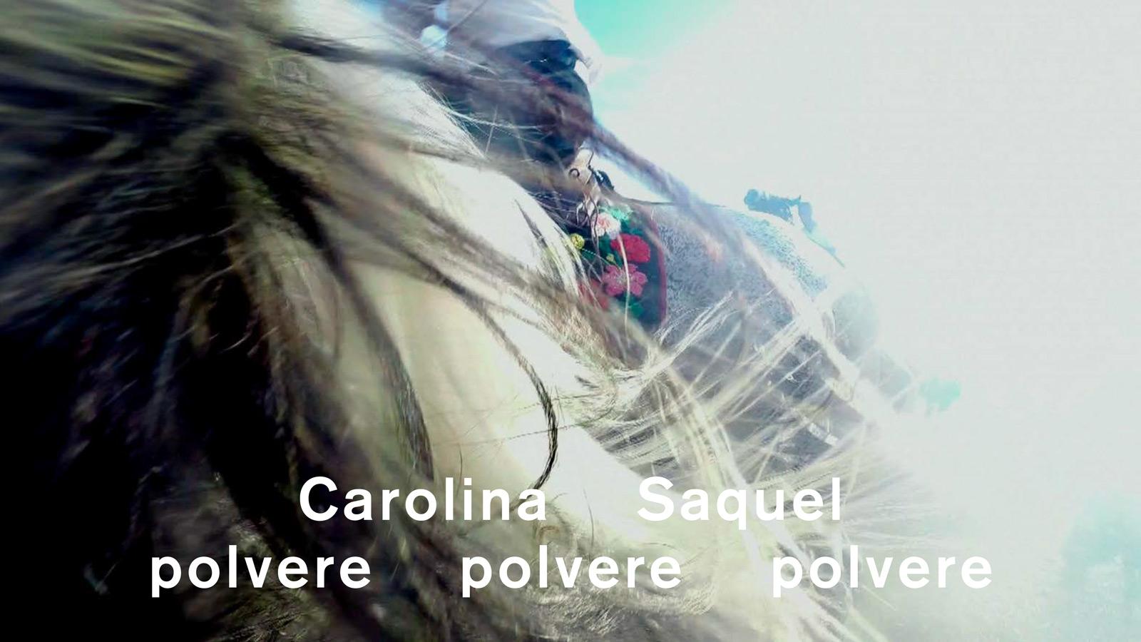 """Alla Galleria Nazionale di Roma il progetto """"polvere polvere polvere"""", personale di Carolina Saquel"""