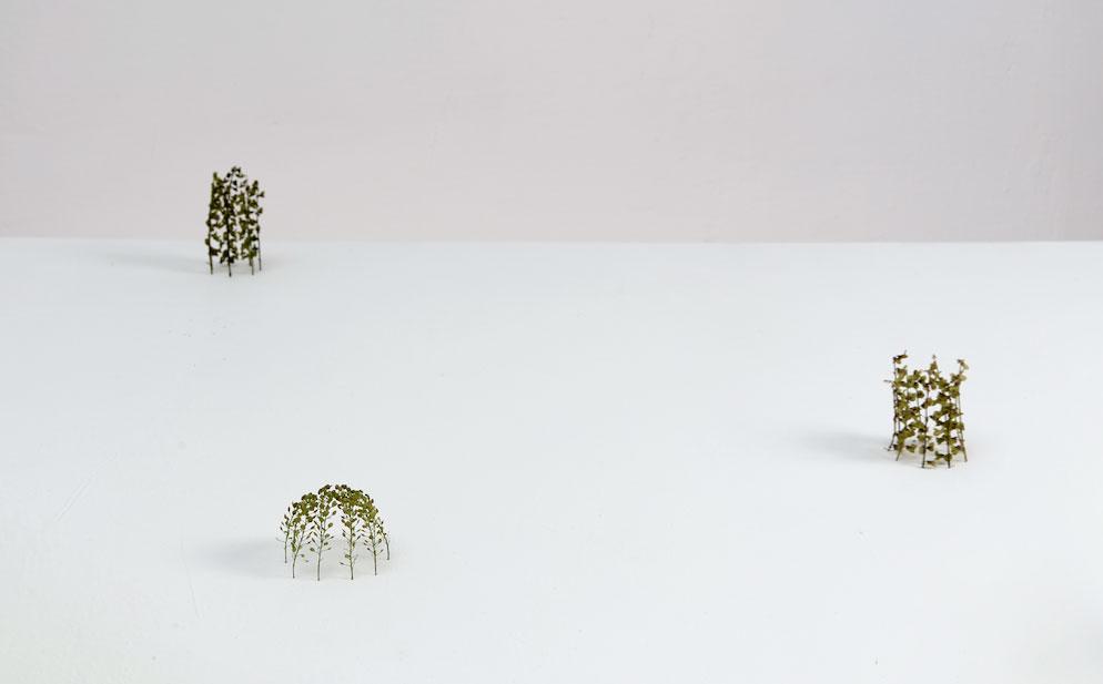 Christiane Löhr, l'artista che crea opere dal contatto diretto con la natura