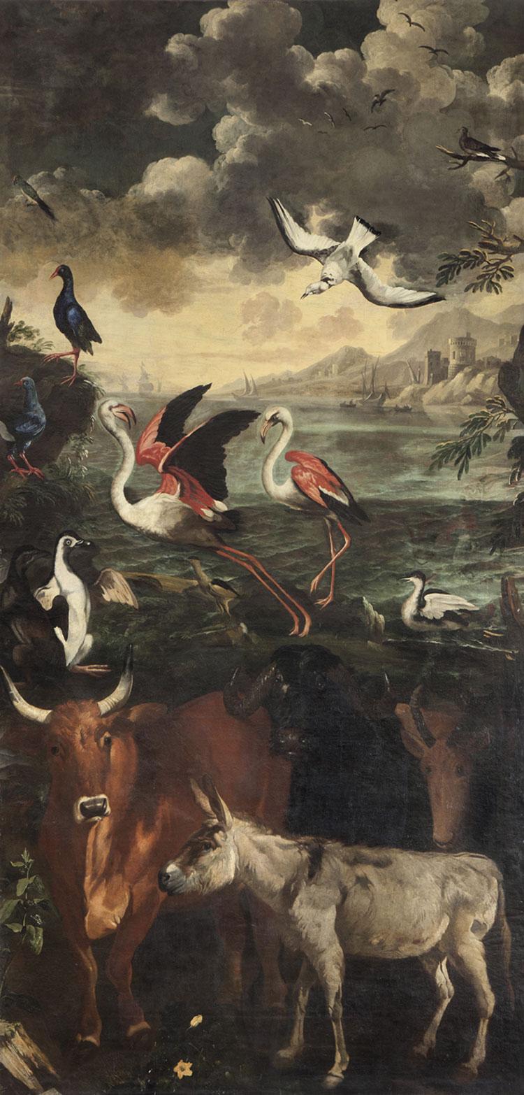 Il meraviglioso mondo della natura tra arte e scienza: in mostra a Palazzo Reale di Milano