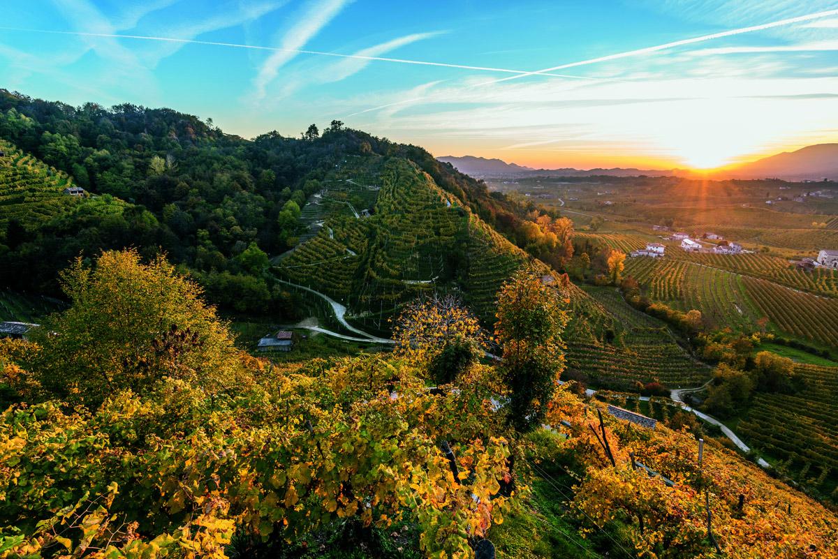 L'Italia ha un nuovo Patrimonio Unesco: le Colline del Prosecco. Sono 55 adesso i siti italiani