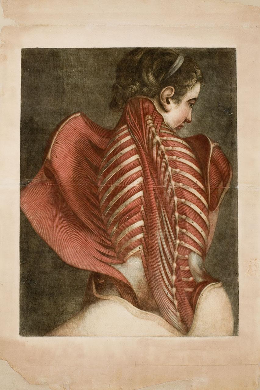 La rivelazione del sublime nel corpo umano. Una mostra al Palazzo delle Esposizioni di Roma