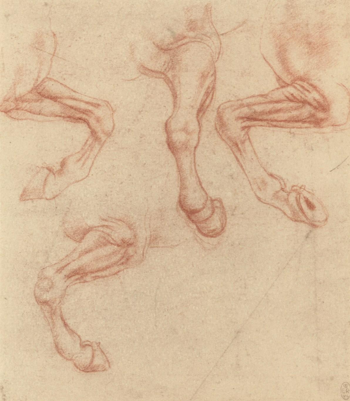 Il genio visionario di Leonardo tra macchine volanti e carri semoventi. Una mostra a Sansepolcro