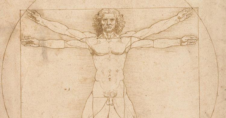 Leonardo da Vinci, l'Uomo Vitruviano è protagonista di una mostra a Venezia che espone 70 disegni