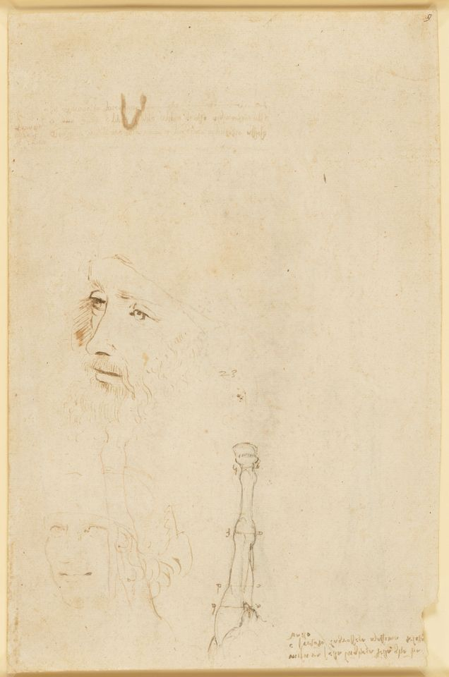 """E per l'anniversario della scomparsa di Leonardo ecco il colpo di scena: spunta un """"nuovo"""" ritratto del genio"""