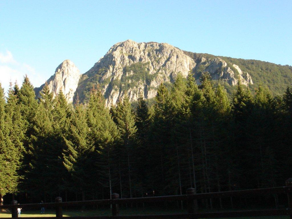 Parchi, la Liguria elimina 540 ettari di aree protette: cancellato il 2,4% di quattro parchi
