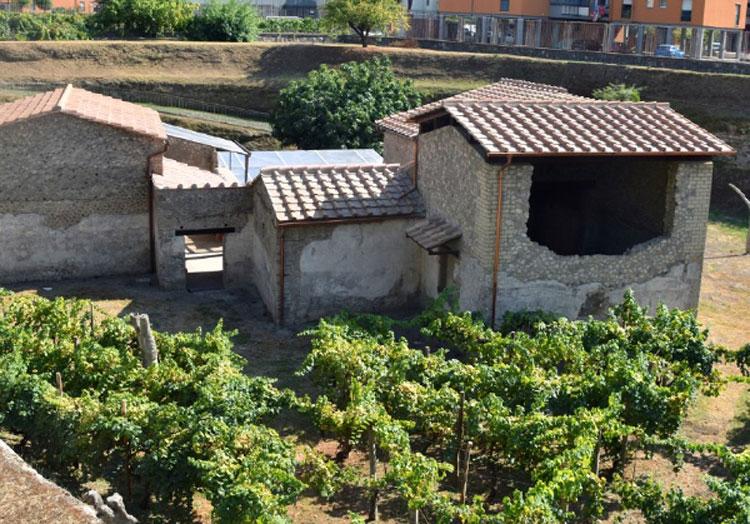 Riaperta al pubblico Villa Regina a Boscoreale, antica villa rustica vesuviana