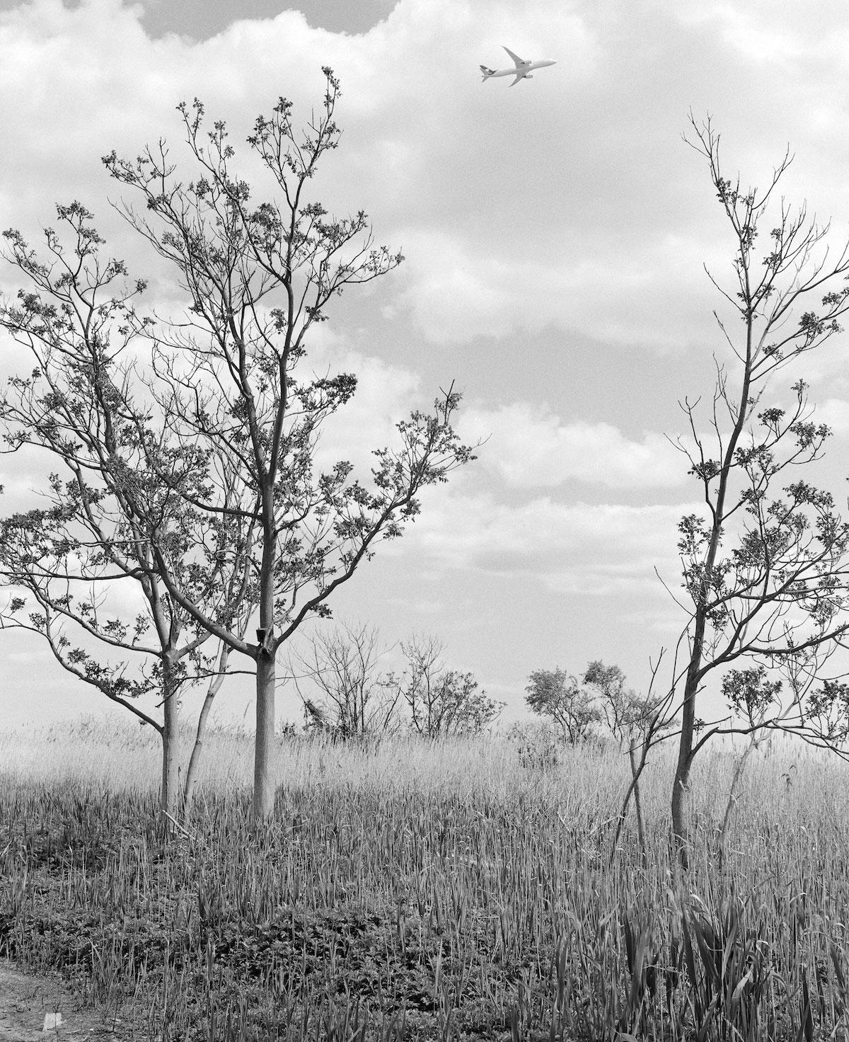 """Una New York insolita e periferica nelle fotografie di Antonio Rovaldi: """"Il suono del becco del picchio"""" in mostra a Bergamo"""