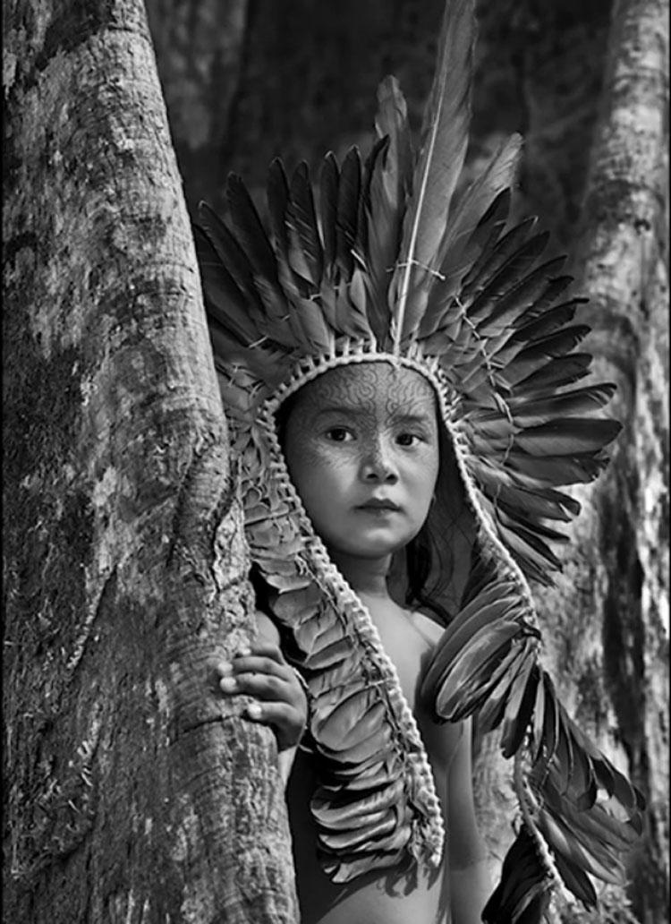 """Salgado lancia un appello per salvare gli indigeni dell'Amazzonia. """" Rischiano il genocidio"""""""