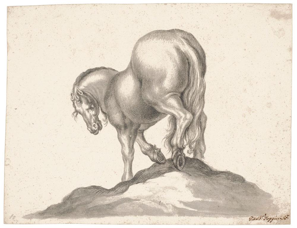 Quattro disegni entrano nelle collezioni degli Uffizi. Tra questi, il cavallo di Jackie Kennedy