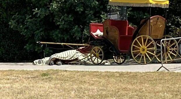 Dopo la morte del cavallo, la Reggia di Caserta impone lo stop al servizio carrozze