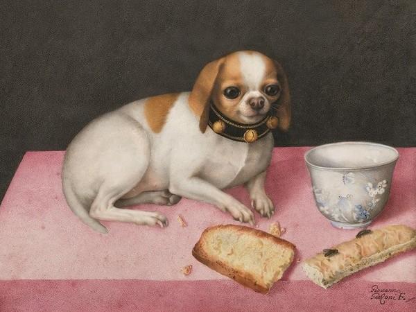 Giovanna Garzoni, Canina con biscotti e una tazza cinese (1648; tempera su pergamena, 275 x 395 mm; Firenze, Gallerie degli Uffizi, inv. Pal. 4770)