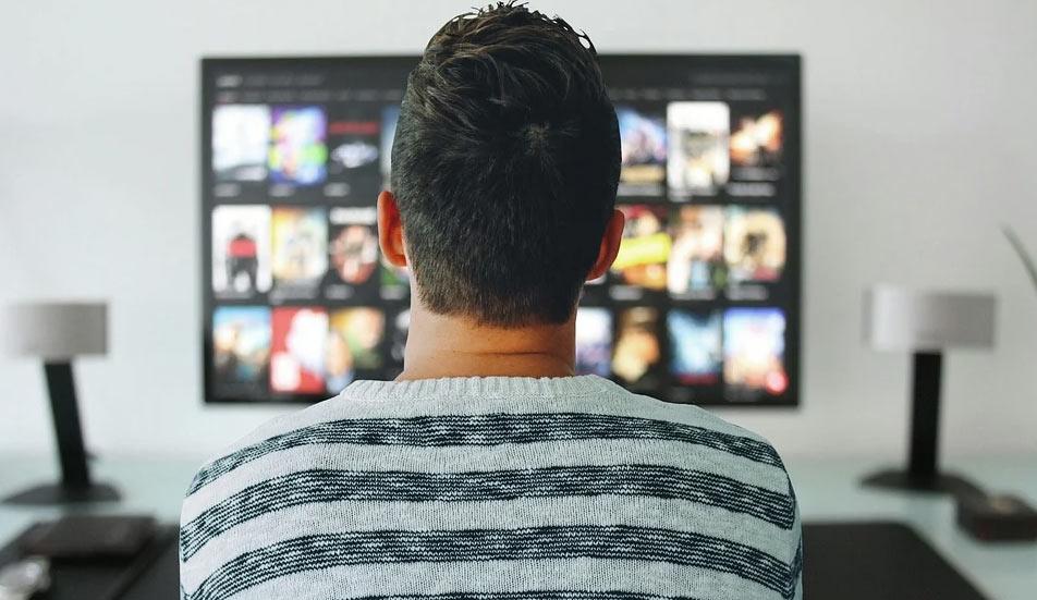 "Deputati leghisti: ""Netflix della cultura? C'è già Rai Play, è proprio necessaria?"""