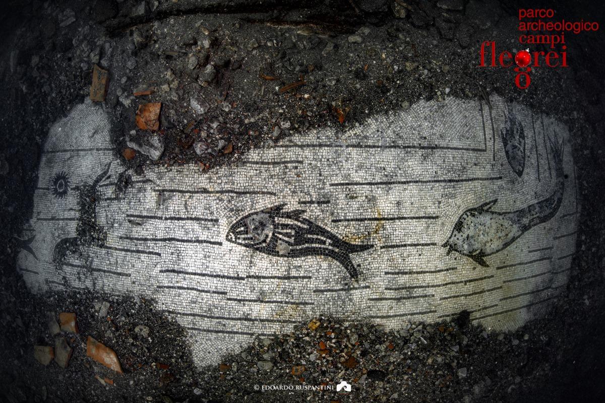 """Campi Flegrei, scoperto un bel mosaico """"marino"""" del III secolo nelle acque del Lacus Baianus"""