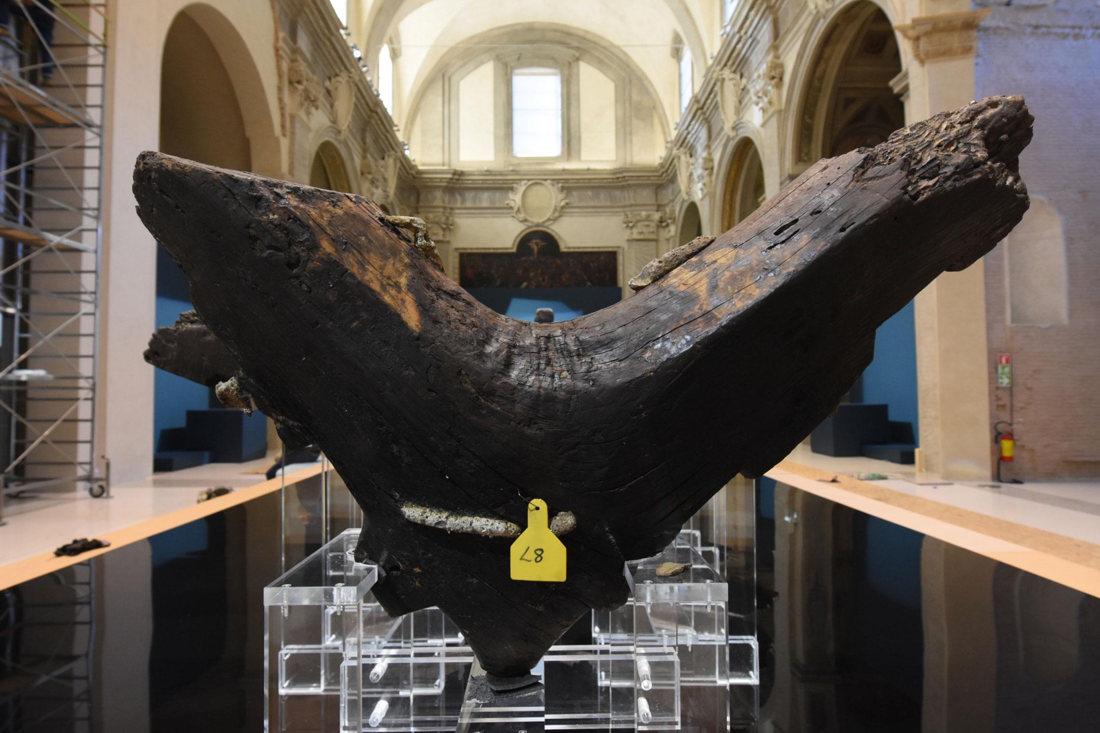 Forlì, per la mostra su Ulisse c'è anche la più antica nave greca al mondo, esposta per la prima volta al pubblico