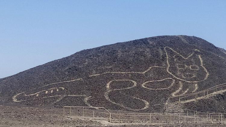 Perù, scoperto un nuovo geoglifo: è un felino sulla collina di Nazca