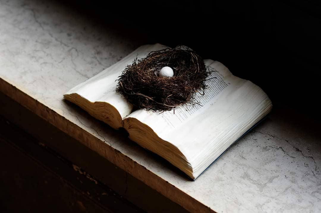 I libri distrutti dalla marea di Venezia diventano opere d'arte. Raccolti 10mila euro all'asta benefica