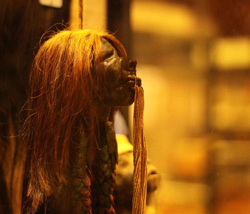 Oxford, museo ritira dalle sue collezioni le teste umane rimpicciolite che ispirarono Harry Potter