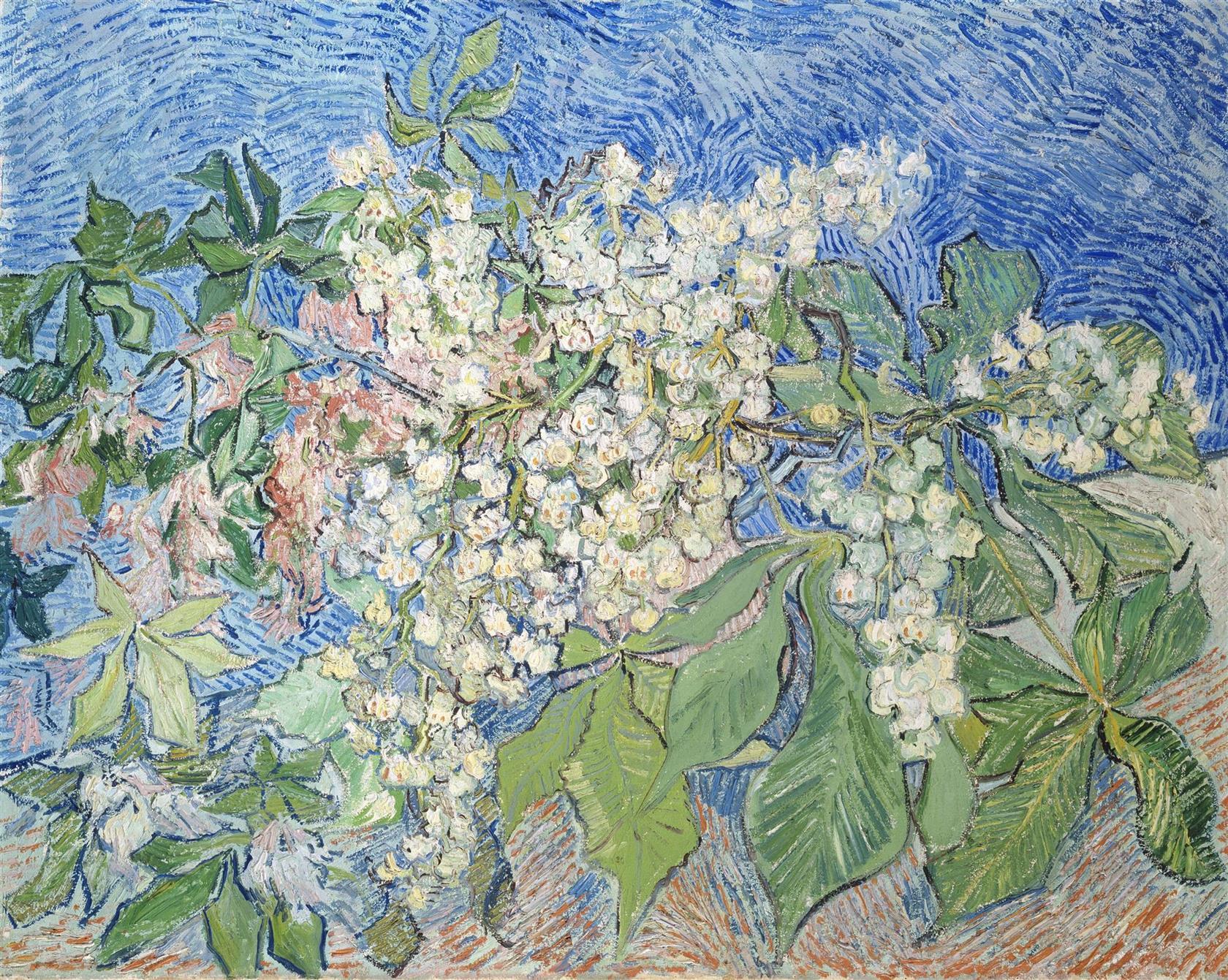 A Lugano, Monet e van Gogh a confronto con Canaletto, Guardi e Strozzi: ecco i capolavori della collezione Bührle