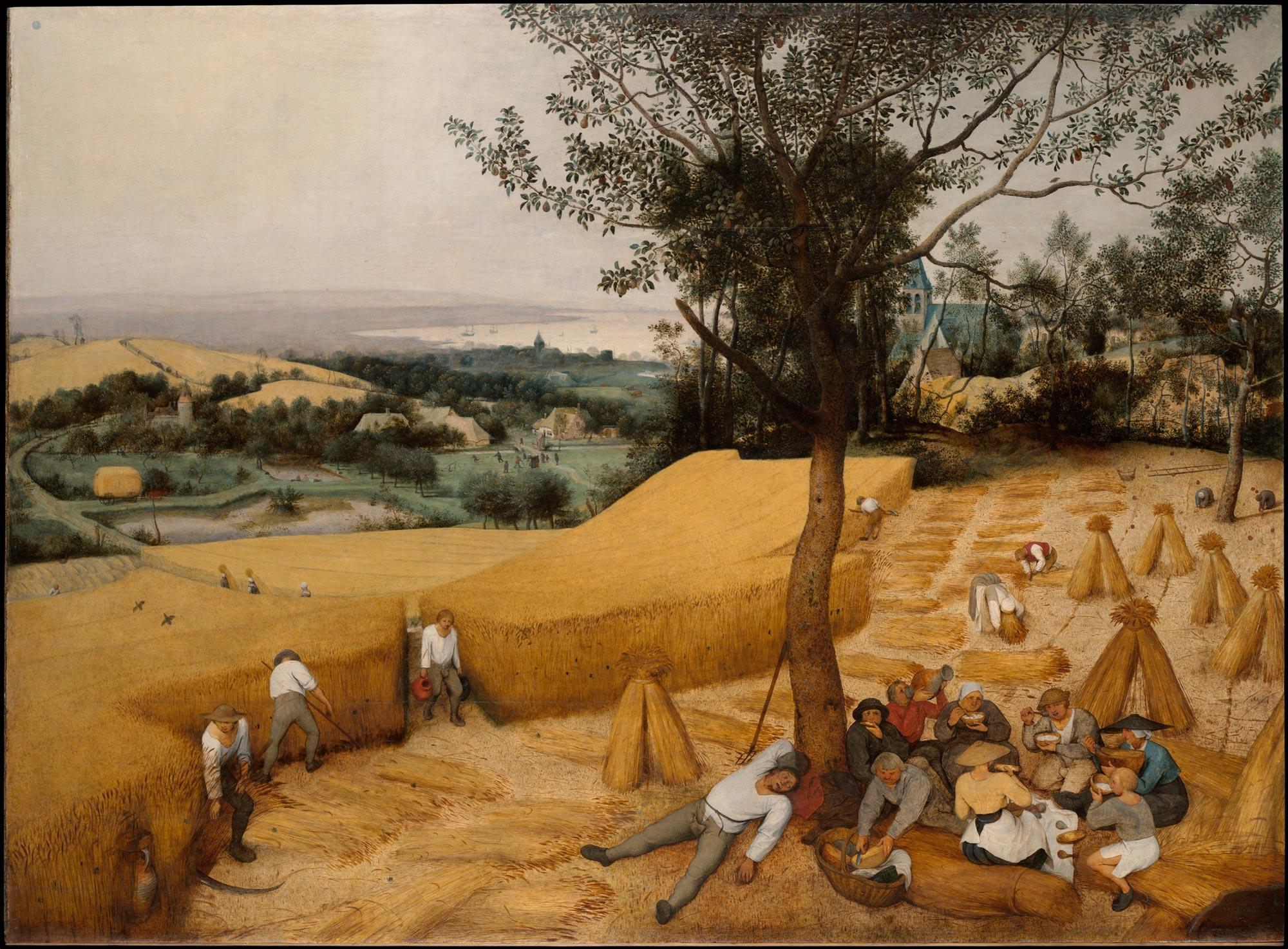 Pieter Bruegel, La mietitura (1565; olio su tavola, 119 x 162 cm; New York, The Metropolitan Museum)