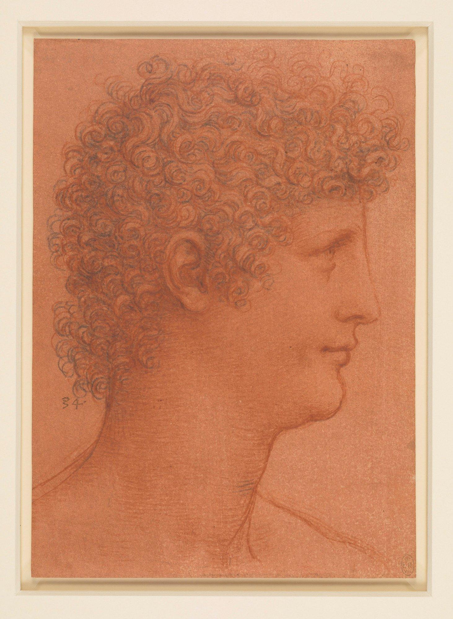 Leonardo da Vinci, Testa di giovane di profilo (1510 circa; gessetto nero e rosso su carta arancione, 217 x 153 mm; Windsor, Royal Collection, inv. RCIN 912554)