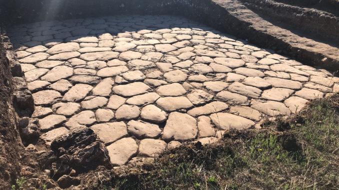 Scoperti resti di grandi domus ad Aquinum grazie agli scavi archeologici dell'Università del Salento