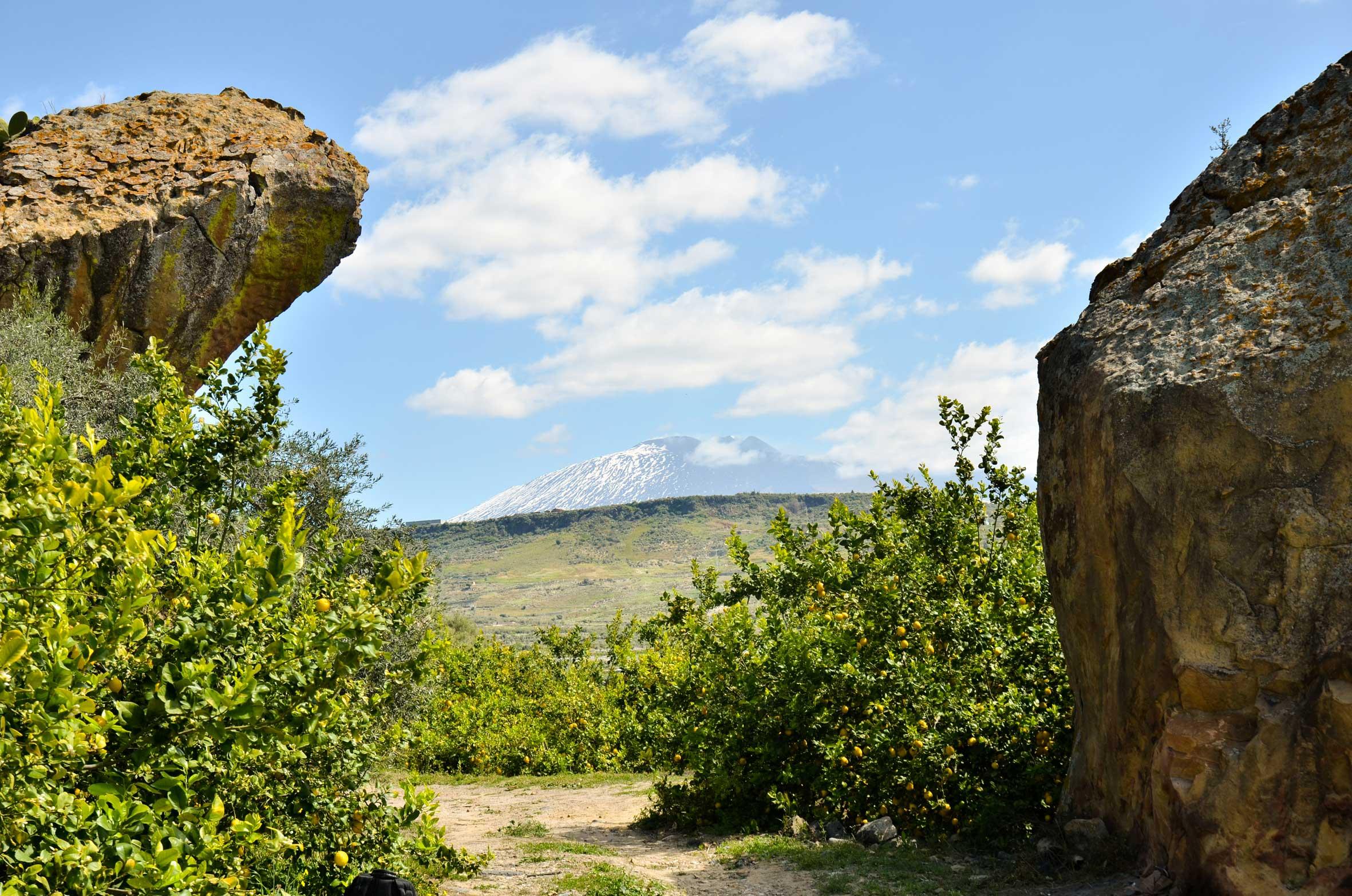 Sicilia, a Centuripe aprono un nuovo museo e un importante sito archeologico preistorico