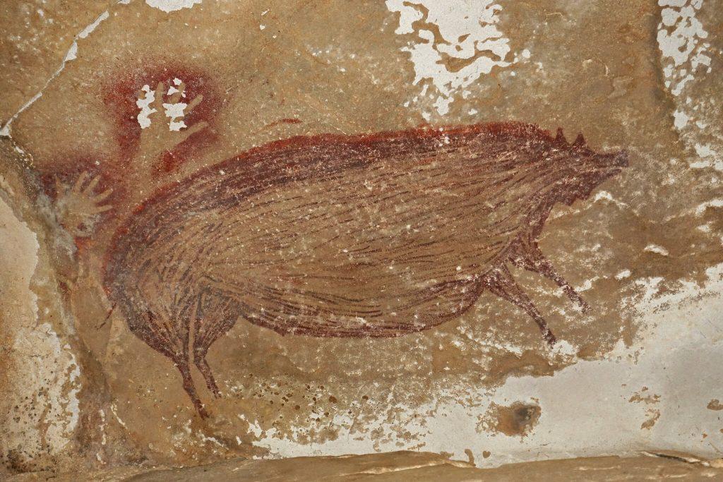 Indonesia, scoperte quella che potrebbe essere la più antica figura d'animale mai dipinta