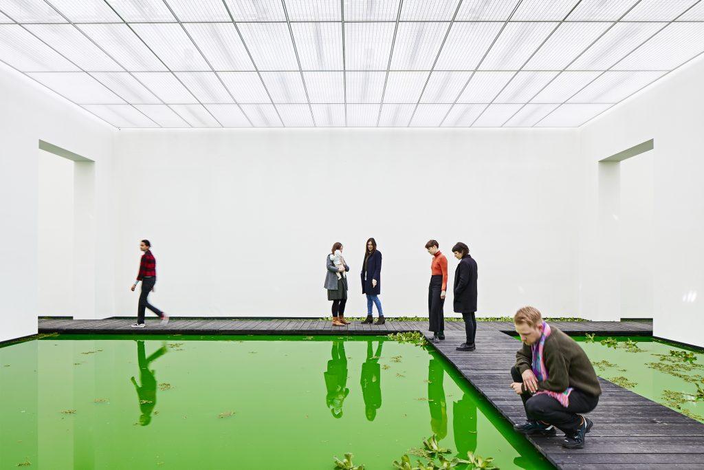 Ólafur Elíasson allaga la Fondation Beyeler di Basilea per portare la natura dentro il museo