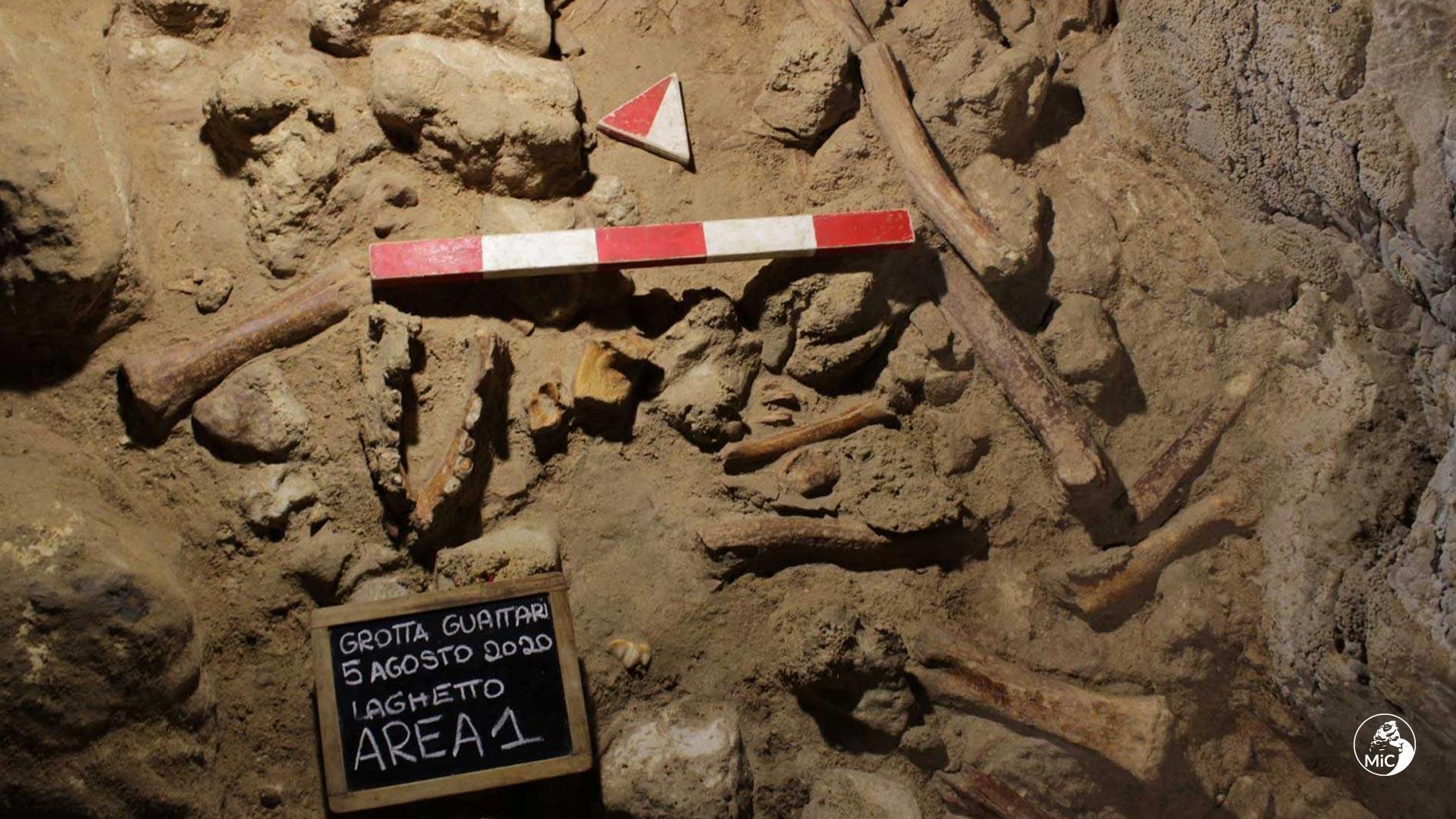 Circeo, trovati resti di nove uomini di Neanderthal nell'importante sito di Grotta Guattari