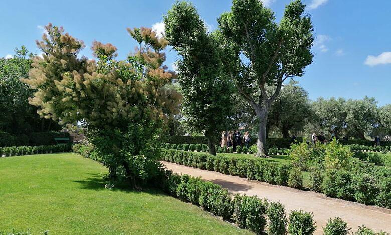 Nuovo restauro vegetale degli Horti Farnesiani sul Palatino