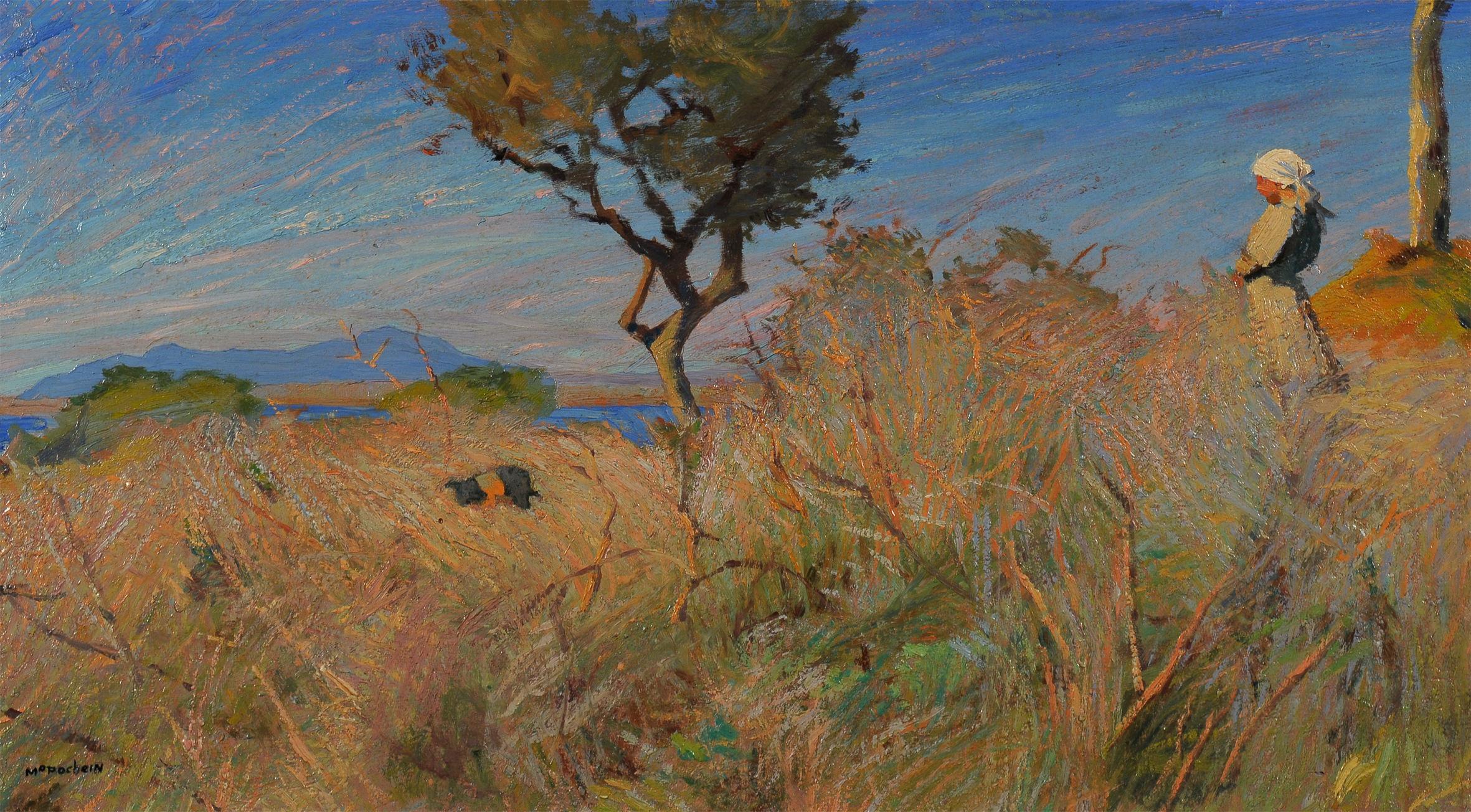 Un Van Gogh involontario: a Livorno la mostra dedicata a Mario Puccini