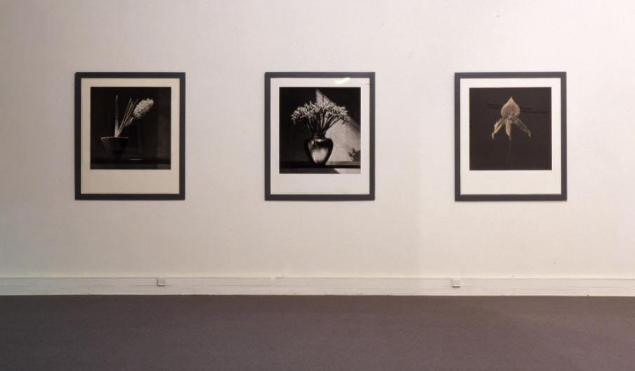 """I musei d'arte contemporanea a Conte: """"abbiamo rispettato le regole, fateci aprire i festivi"""""""
