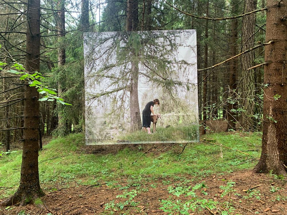 Nei boschi della Val di Non gigantografie sospese... tra gli alberi