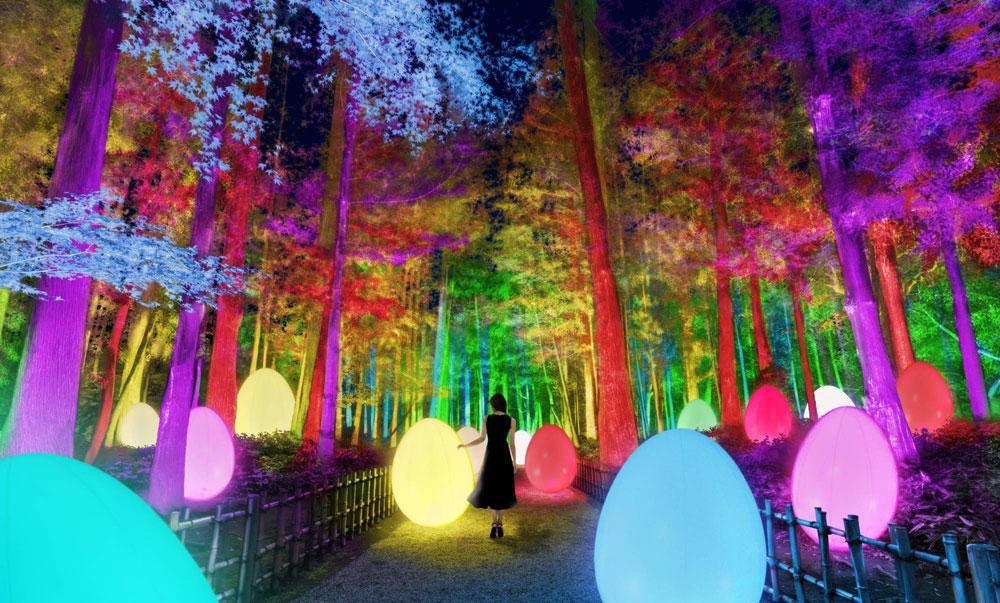 La tecnologia digitale trasforma storico giardino giapponese in un paese delle meraviglie